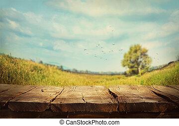 fjäder, bakgrund