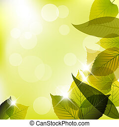 fjäder, det leafs, abstrakt, bakgrund