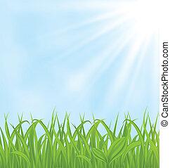 fjäder, gräs, grön fond