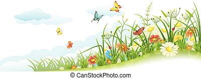 fjäder, gräs, och, blomningen