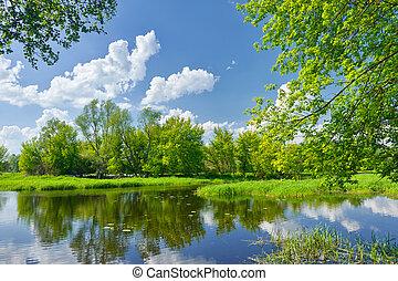 fjäder, landskap, med, narew, flod, och, skyn, på, den, blåttsky