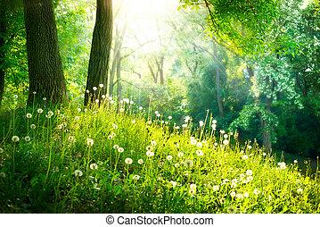 fjäder, nature., vacker, landskap., grönt gräs, och, träd