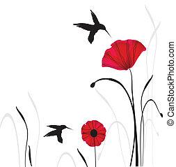 fjäder, poppies., kort, skönhet