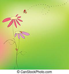 fjäder, sommar, blommig, nyckelpigor, kort
