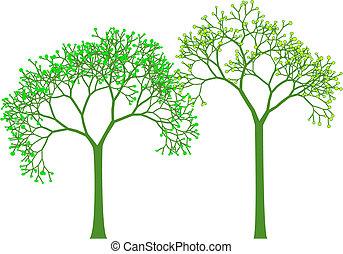 fjäder, vektor, träd
