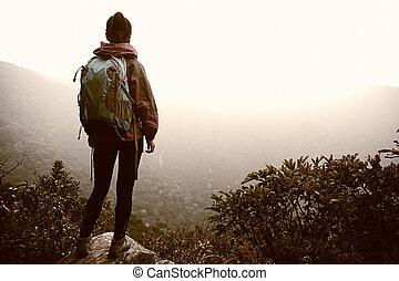 fjäll, framgångsrik, vandrare, bergstopp, vagga, iaktta