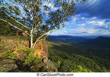fjäll, utkikare, skydd, på, klippa, blå fjäll, australien