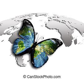 fjäril, värld