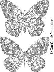 fjärilar, med, delikat, struktur