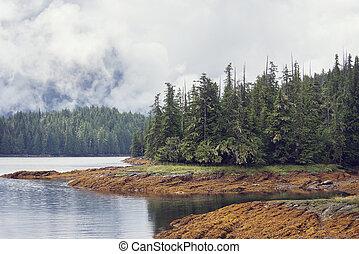 Fjord near Ketchikan Alaska.