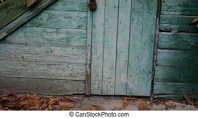 flétri, house., bois, feuilles, paint., close-up., ruiné, abandonnés, escalier, parsemé, doors., a mûri, vieux