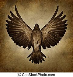 flügeln, von, freiheit
