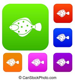flądra, fish, komplet, zbiór