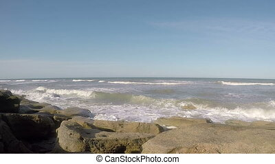 fl, chênes, plage, deux, washington