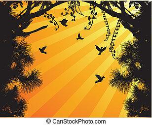 fl, silhouette, uccello, albero, natura