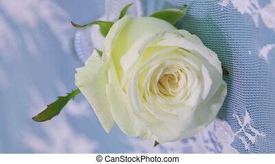 flacon, rose
