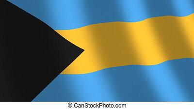 Flag Bahamas moving wind - National flag of Bahamas with...