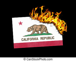 Flag burning - California