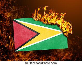 Flag burning - Guyana