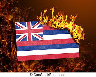 Flag burning - Hawaii