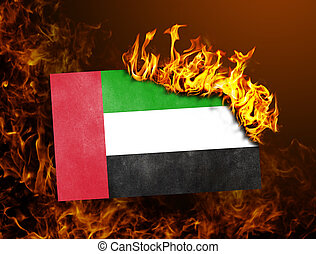 Flag burning - United Arab Emirates