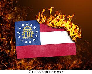 Flag burning - XXXX