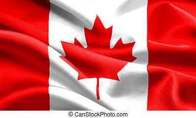 flag., canadense