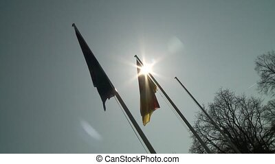 Flag, Germany and Europe