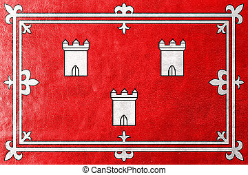 Flag of Aberdeen, Scotland, painted on leather texture