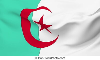 Flag of Algeria - Flag of the Algeria waving in the wind....