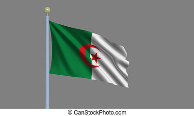 Flag of Algeria waving in the wind with flagpole -with alpha...