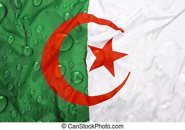 Flag of Algeria with rain drops