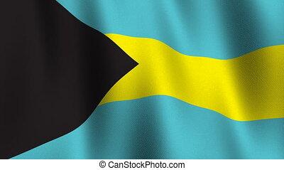 Flag of Bahamas, seamless loop - Flag of Bahamas waving in...