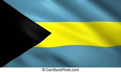 Flag of Bahamas waving in the wind