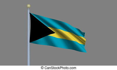 Flag of Bahamas with alpha matte - Flag of Bahamas waving in...