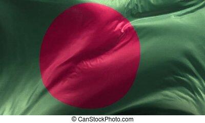 Flag of Bangladesh Loop 3D
