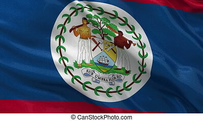 Flag of Belize seamless loop - Flag of Belize gently waving...