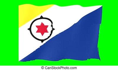 Flag of Bonaire . Waving flag