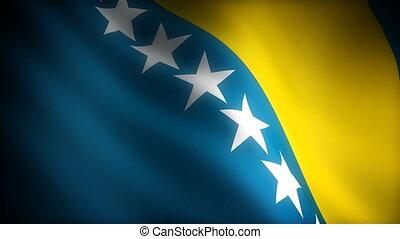 Flag of Bosnia-Herzegovina (seamless)