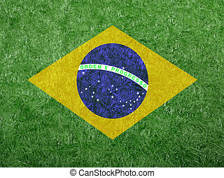 flag of Brazil as a painting on green grass