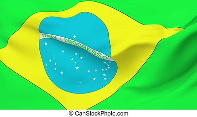 Flag of Brazil - Flag of the Brazil waving in the wind....