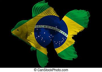 Flag of Brazil on goldfish