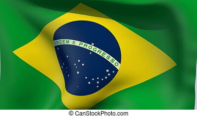 Flag of Brazil - Flags of the world collection
