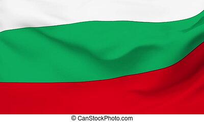 Flag of Bulgaria - Flag of the Bulgaria waving in the wind....