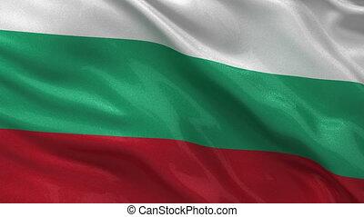 Flag of Bulgaria seamless loop