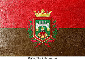 Flag of Burgos, Spain, painted on leather texture