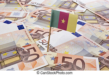 Flag of Cameroon sticking in european banknotes.(series)