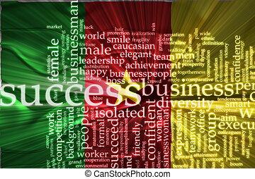 Flag of Cameroon wavy success