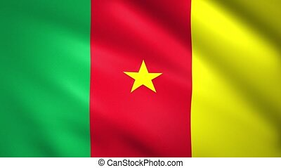 Flag of Cameroon with the star in the middle