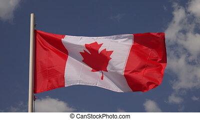 Flag Of Canada. 4K.
